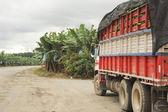 Banana truck — Stock Photo