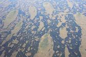 Everglades of Florida near Miami  — Stok fotoğraf