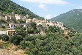 The village of Olmeto — Stock Photo