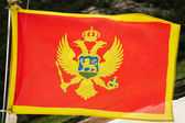 National flag of Montenegro — Stock Photo