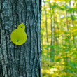 Trail marker on tree — Stock Photo #37083065