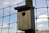 Wooden bird house on fence — Stock Photo
