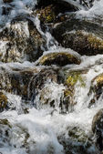 Motion blur water over mossy rocks. — Stock fotografie
