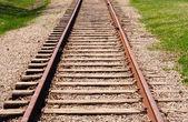 Receding train tracks near grass. — Stock Photo