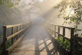 A Foggy Bridge to Nowhere — Stock Photo