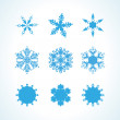 Collection of nine elegance snowflakes — Stock Vector