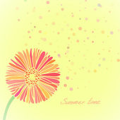 Illustration for gift card with summer daisy flower — Stock Vector