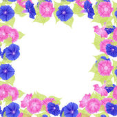 Pattern with pink and violet flowers (petunias) — Stock Vector