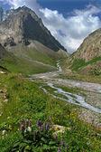 山を風景します。 — ストック写真