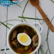 Dock soup with egg — Stock Photo