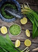 Bear's onion pesto. — Stock Photo