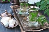Mint tea. — Stock Photo