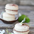 Stock Photo: Macarons