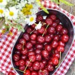 Cherry berries — Stock Photo