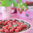 Stock Photo: Chocolate and raspberry tart
