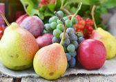 осенние фрукты — Стоковое фото