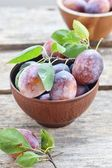 Plums fruits — Foto Stock