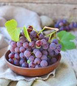 Grape. — Stock Photo