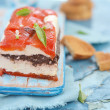 Cheese terrine — Stock Photo #30819083