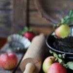 Apples — Stock Photo #31506673