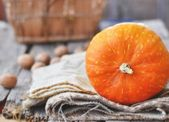 Orange decorative pumpkin — Stock Photo