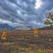 Altai mountains — Stockfoto