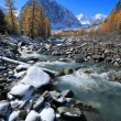 Altai mountains — Stock Photo
