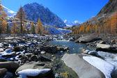алтайские горы — Стоковое фото