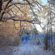 Winter Landscape — Stock Photo #14152752