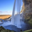 Iceland Nature — Stock Photo #43765949