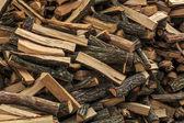 Oak firewood — Stock Photo