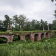 Old stone bridge with vegatation — Photo