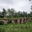Old stone bridge with vegatation — Stock Photo