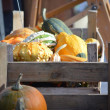 Pumpkins in wooden boxes — Stock Photo