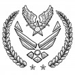 US Air Force military insignia — Stok Vektör