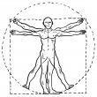 Vitruvian man sketch - Stock Vector