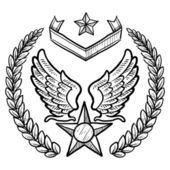 US Air Force Insignia sketch — Vettoriale Stock