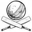 Cricket sports equipment - Stock Vector