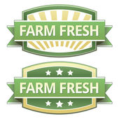 Farm Fresh food label — Stock Vector