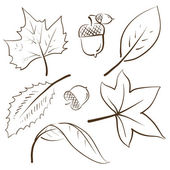 Autumn objects sketch — Stock Vector
