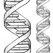 Seamless DNA double helix pattern — Imagen vectorial