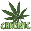Vector de stock : Chronic marijuansketch