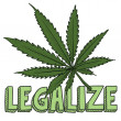 Legalize marijuana sketch - Stock Vector