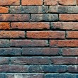 Brick wall texture — Stock Photo #14107855