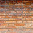 Brick wall texture — Stock Photo #14109007