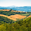 Stock Photo: Tuscany landscape Italy