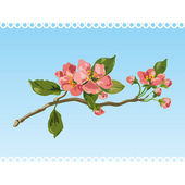 Vintage spring blossom. Vector — Stock Vector