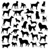 Uppsättning hundar silhuett. vektor. — Stockvektor