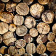 Stack of chopped fire wood — Stock Photo #21954245