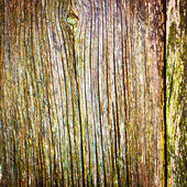 Old wood texture background — Stock Photo